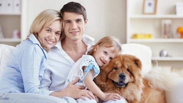 Wills & Trusts dog-young-family Direct Wills Mansfield